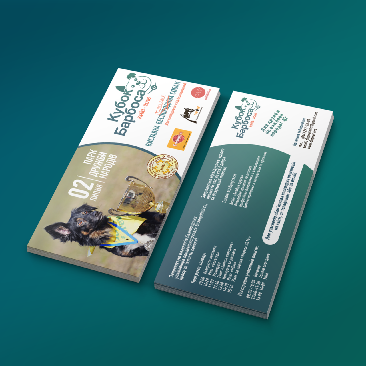 Double side flyer design 2016